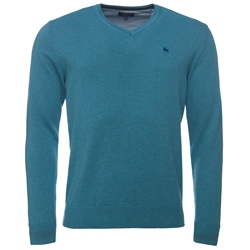 Magee Clothing Teal Green Cotton V-Neck Regular Fit Jumper