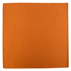 Magee Clothing Copper Silk Pocket Handkerchief