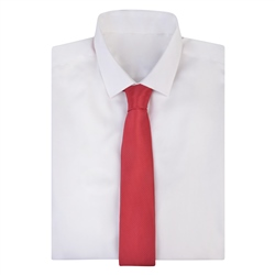 Red Geometric Dotted Tie